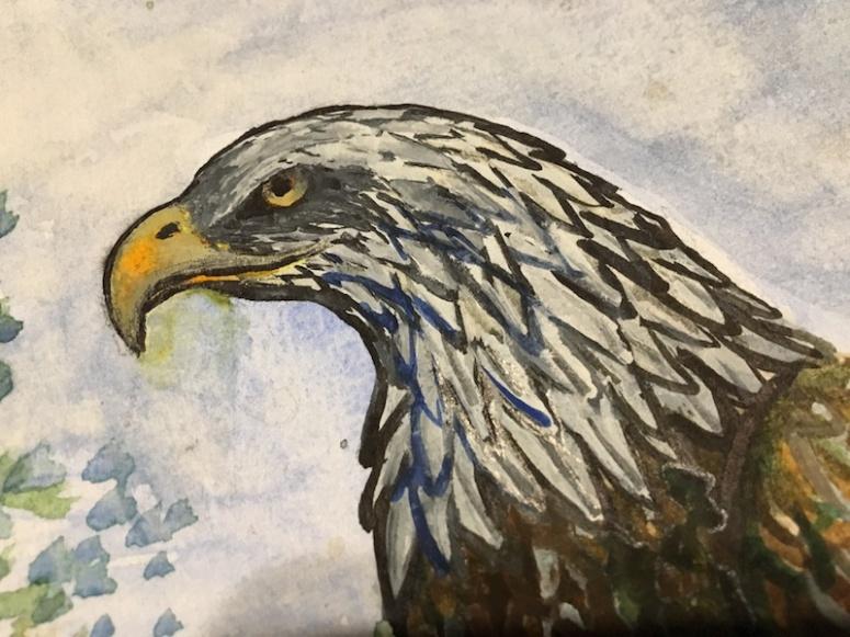 Eagle's Head D